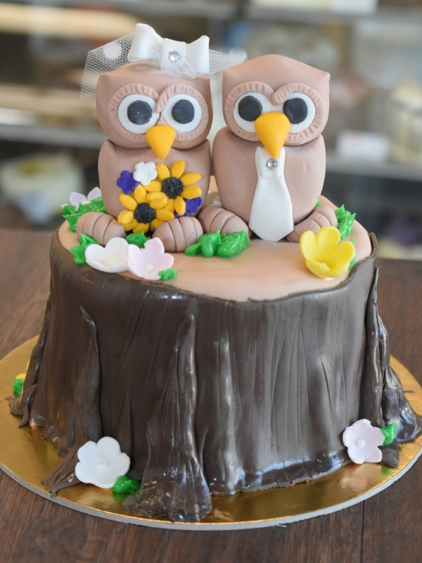 Owl cake by Goodies Bakeshop