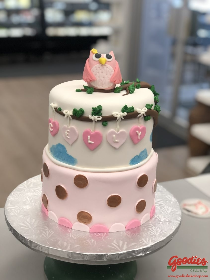 Pleasing Baby Owl First Birthday Custom Cake By Goodies Winnipeg Bakery Birthday Cards Printable Riciscafe Filternl